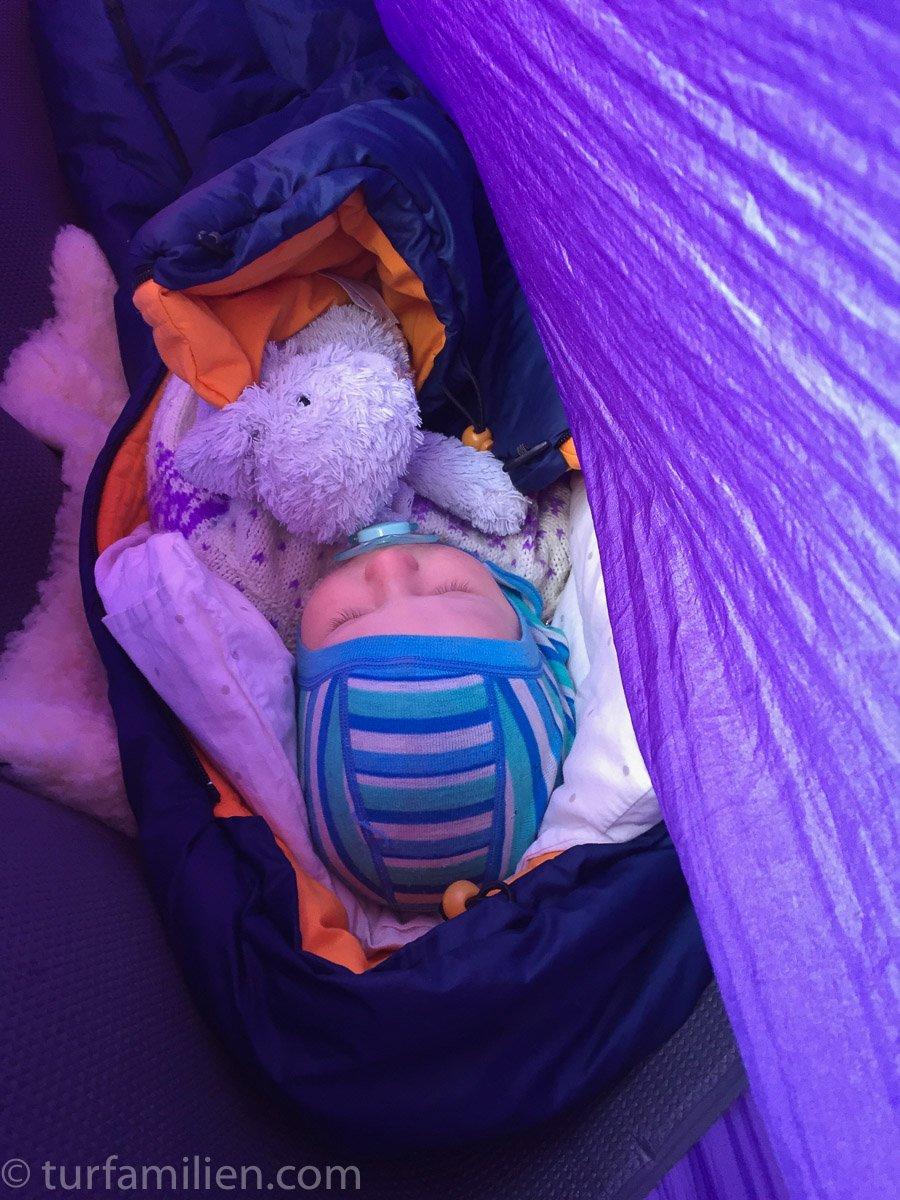 leo sover godt i hengekøya for nå