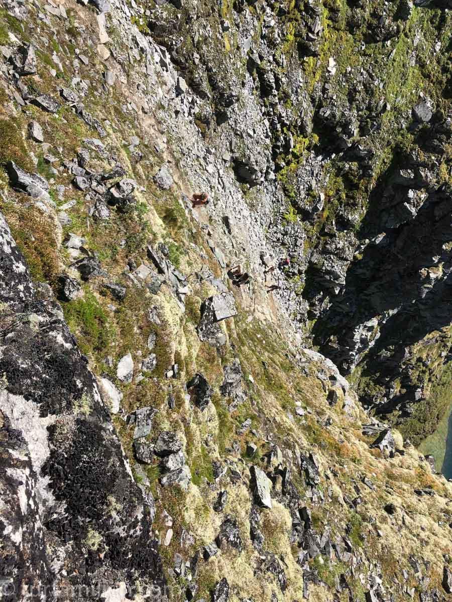 Det er veldig bratt sti opp Innerdalstårnet