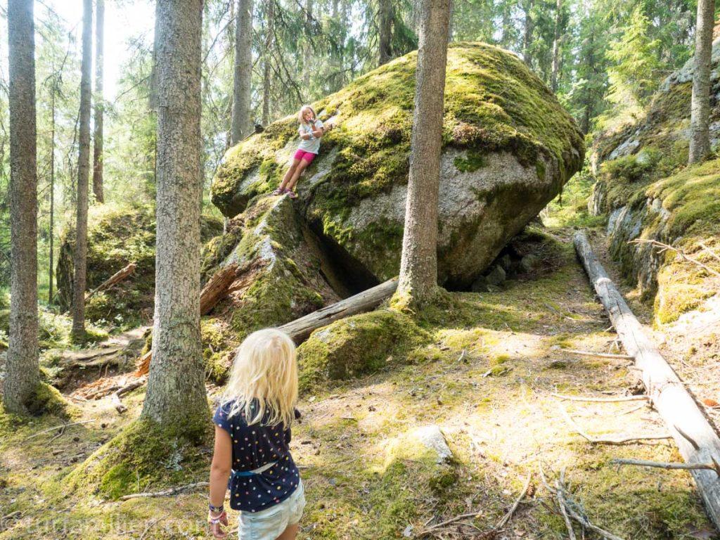 fasaskogen byr på enorme steinblokker