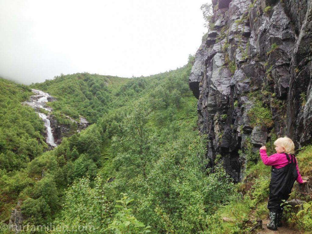 i fjellandskap i innerdalen