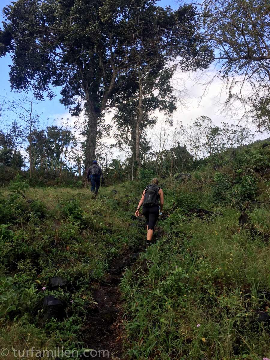 stien opp mot vulkan Concepción nicaragua