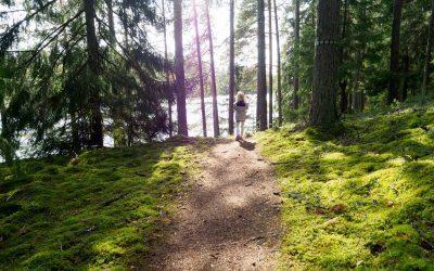 Barnevennlig tur i Tiveden Nasjonalpark